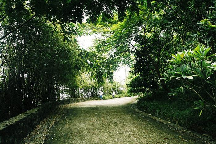 Không chỉ tham quan hoặc dâng hương, du khách còn có cơ hội được đắm mình trong không gian yên tĩnh, tôn nghiêm với không khí trong lành, gió núi mát mẻ và bạt ngàn màu xanh cây cỏ.