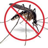 Phun thuốc diệt muỗi coi chừng ngộ độc