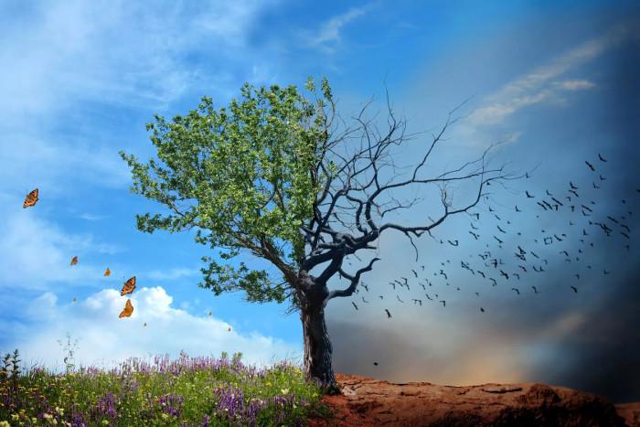 Mất đi trọng lực là thảm họa diệt vong khủng khiếp nhất dành cho nhân loại, và cho cả Trái đất.
