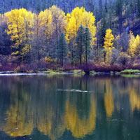 Vẻ đẹp thiên nhiên bốn mùa ở tiểu bang Washington