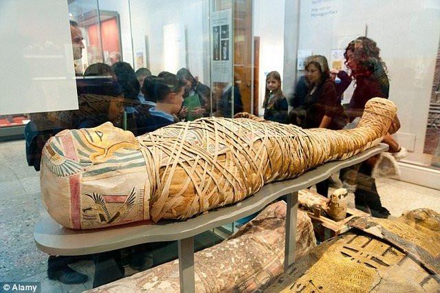 Xác ướp Ai Cập cổ xưa được trưng bày trong bảo tàng.