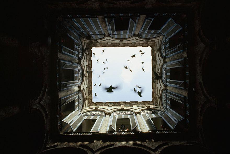 Một đàn chim bay ra từ sân trong của Old Havana