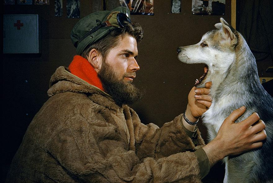 Người đàn ông và chú chó Alaskan Malamute