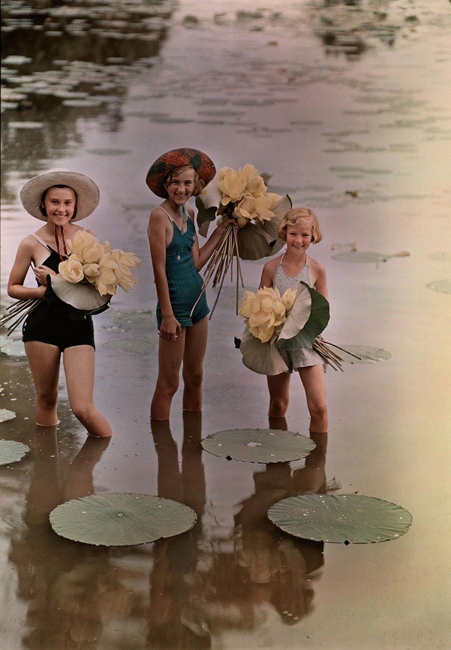 Những cô gái hái hoa sen