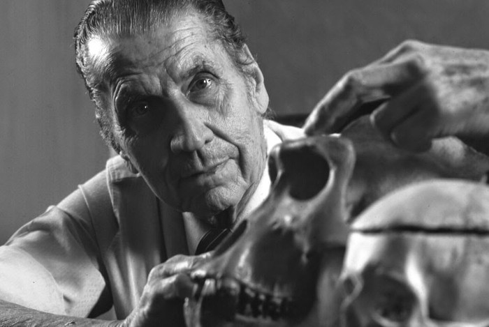 Nhà thần kinh học José Delgado.