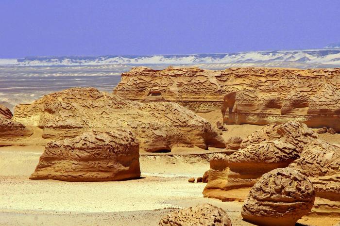 Thung lũng cá voi nằm cách thủ đô Cario Ai Cập 150 về phía tây nam.