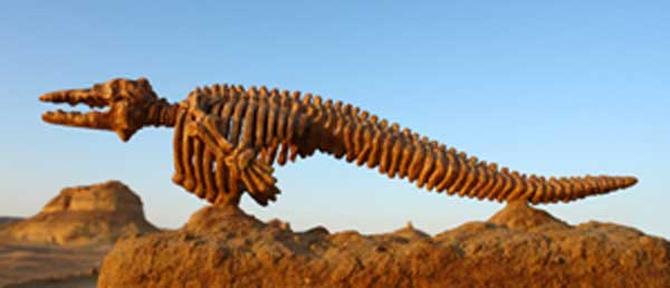 Hóa thạch