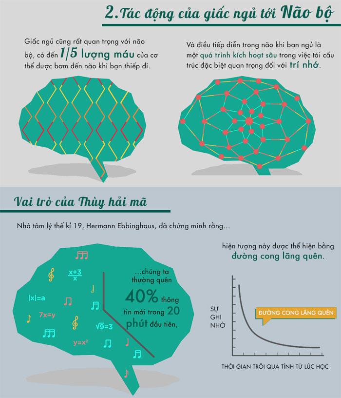 Điều tiếp diễn trong não khi chúng ta ngủ là một quá trình kích hoạt sâu trong việc tái cấu trúc đặc biệt quan trọng đối với trí nhớ.