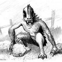 13 sinh vật đáng sợ và bí ẩn nhất thế giới
