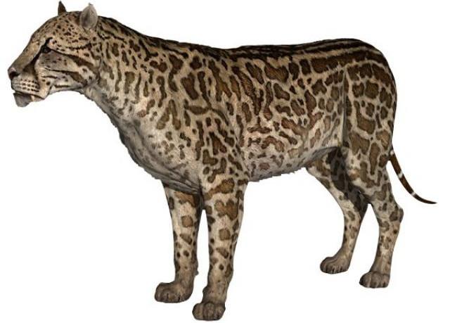 Chúng ta đã từng là con mồi ưa thích của loài mèo lớn đáng sợ này.