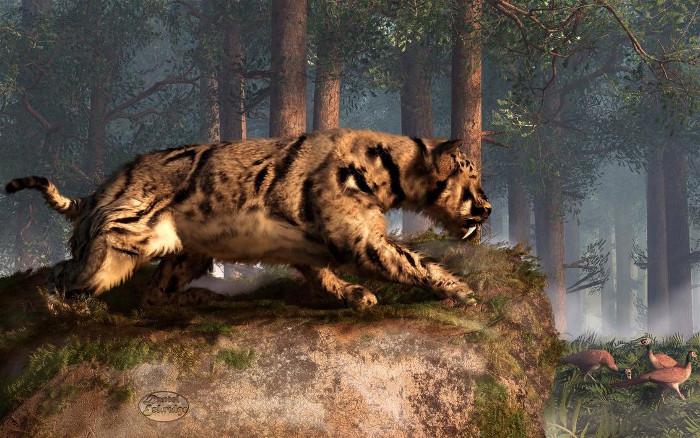 Loài Dinofelis là động lực thúc đẩy sự tiến hóa của con người.