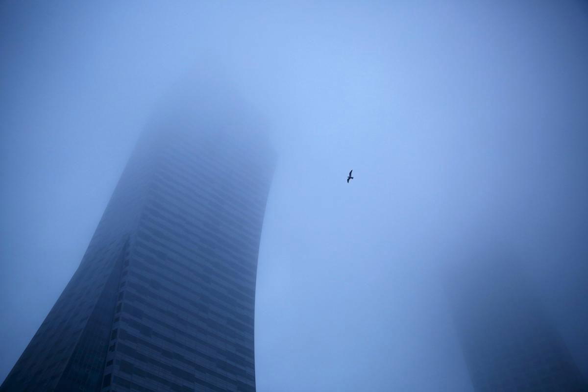 Một con chim bay phía trước toà cao ốc bị sương phủ mờ ở Warsaw, Ba Lan.