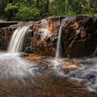 Khu quần thể rừng Dong Phaya Yen – Khao Yai