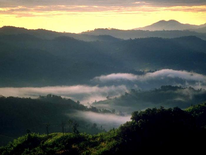 Trong khu quần thể rừng Dong Phaya Yen, Vườn quốc gia Khao Yai là một vườn quốc gia nổi tiếng nhất