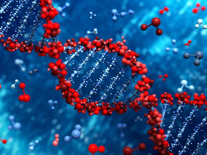 Bộ gene chứa đựng thông tin về sức khỏe và đặc điểm vật lý của cơ thể mỗi người.