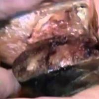 Video: Bụng cá trích phát sáng xanh dương nghi nhiễm độc phóng xạ