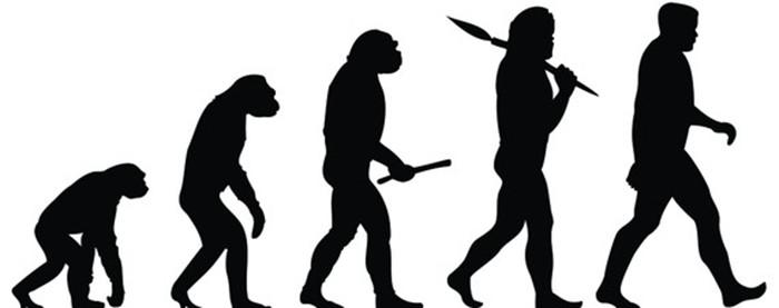 Quá trình tiến hóa của loài người.