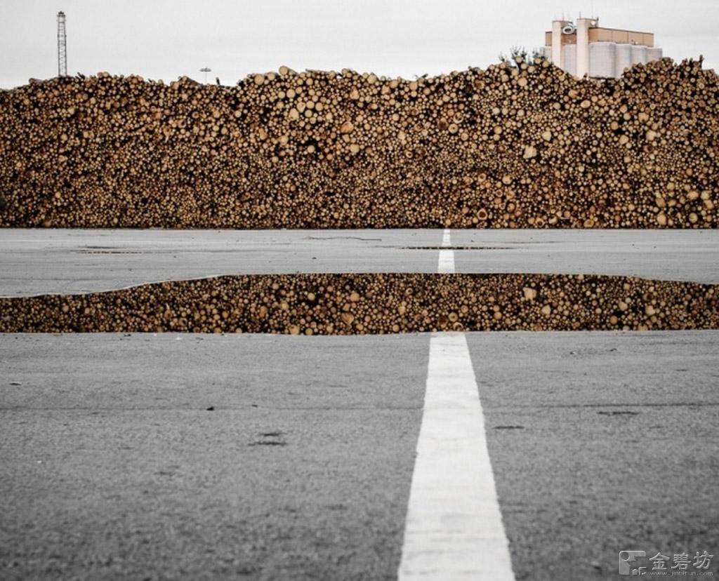 Vết nứt con đường và đống gỗ.