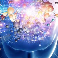 So sánh sức mạnh của não người và máy tính