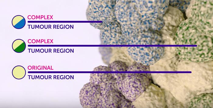 Nếu thành công, kỹ thuật này sẽ hình thành nên một liệu pháp điều trị ung thư mới.