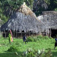 Các khu rừng Kaya của người Mijikenda