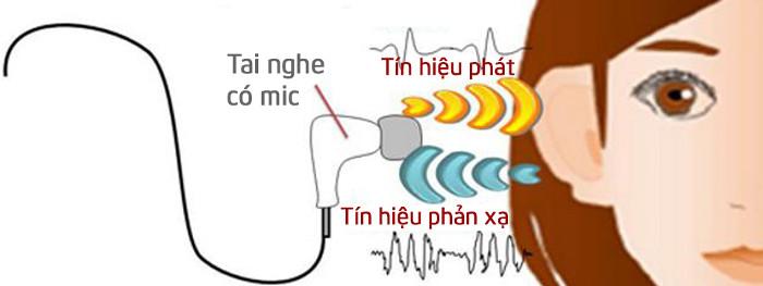 Hình dáng của lỗ tai mỗi người là duy nhất nên tiếng vang mà nó tạo ra cũng duy nhất.
