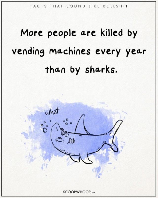 Mỗi năm, nhiều người chết vì máy bán hàng tự động hơn là do cá mập