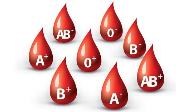 Các nhóm máu có thể di truyền cho thế hệ sau.