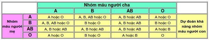 Từ nhóm máu của cha mẹ có thể suy ra nhóm máu của con.