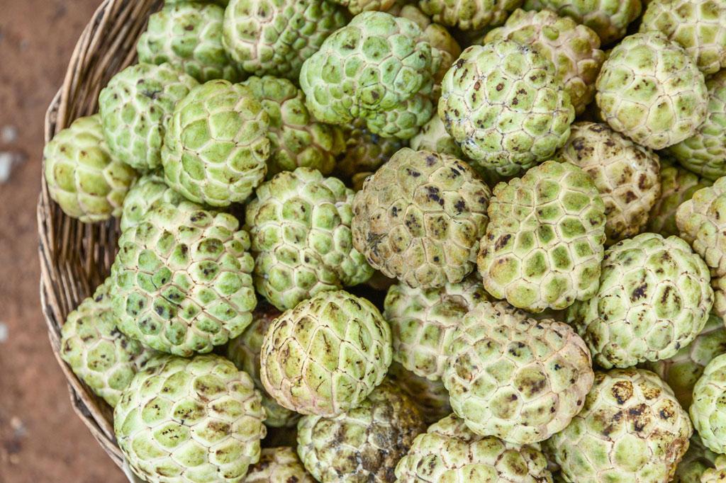 Quả na rất ngon ngọt và nhiều cùi. Loài quả này khiến chúng ta phải kiên nhẫn vì nó chứa rất nhiều hạt.