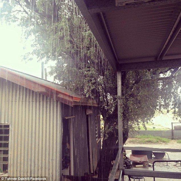 """""""Cơn mưa vàng"""" mang lại sự sống cho thị trấn khô hạn ở Úc."""