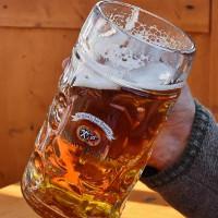 Chất tạo vị đắng của bia có thể phòng chống ung thư
