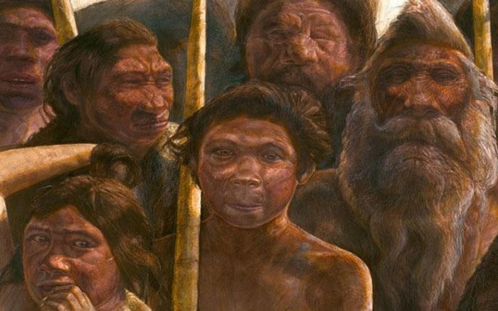 Tổ tiên của loài người