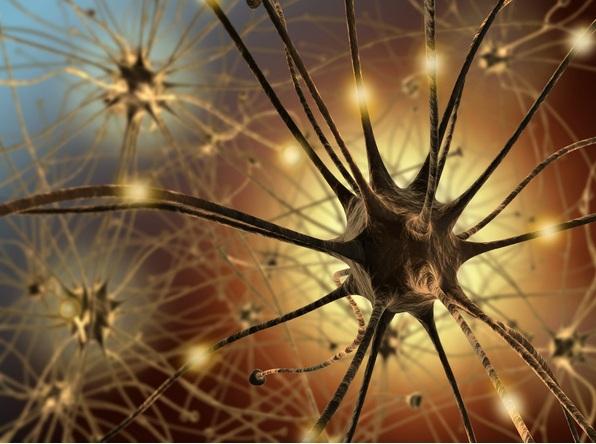 Kỹ thuật bơm tế bào neuron khỏe mạnh vào não.