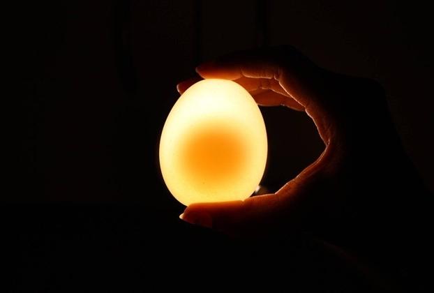 Soi dưới ánh đèn, bạn có thể nhìn rõ cả lòng đỏ trứng.