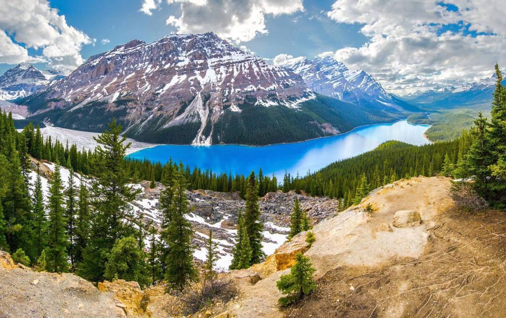 Hồ Peyto (Canada)