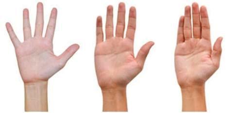 Bạn biết gì qua khoảng cách giữa các ngón tay?
