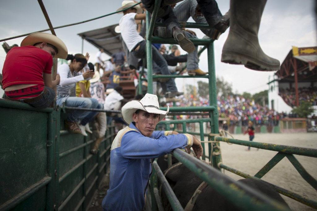 Vào tháng 3, các chàng cao bồi ở Cuba đổ về Hanava để tham dự Hội chợ gia súc quốc tế.