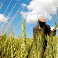 Ethiopia từ đống tro tàn trở thành nền kinh tế phát triển nhanh nhất châu lục