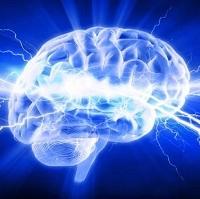 """10 điều về trí não """"tưởng vậy mà không phải vậy"""""""