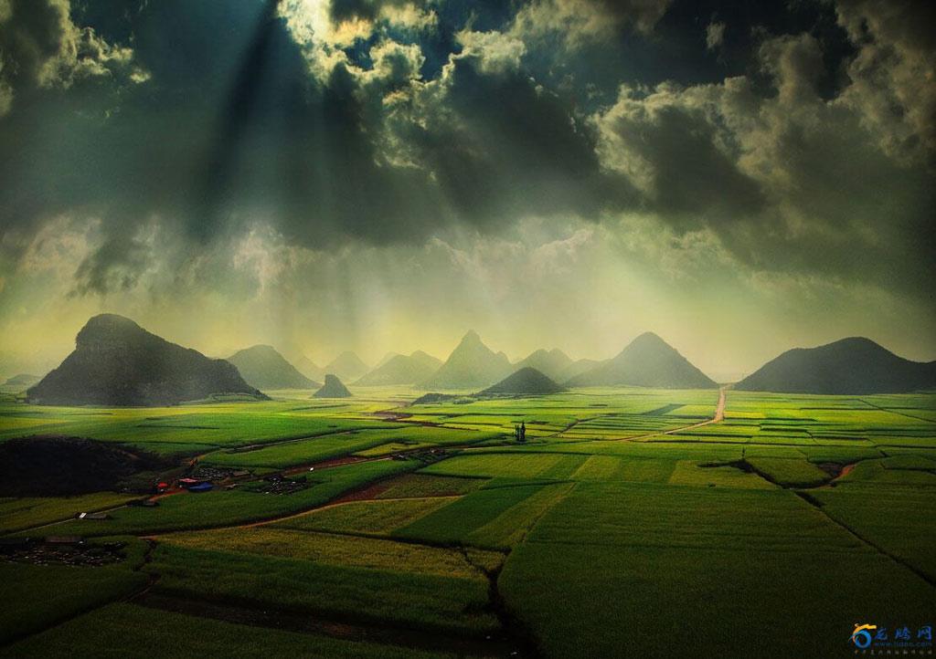 Châu Á vốn nổi tiếng bởi nền văn hóa lúa nước lâu đời với những cánh đồng xanh mướt, thẳng cánh cò bay