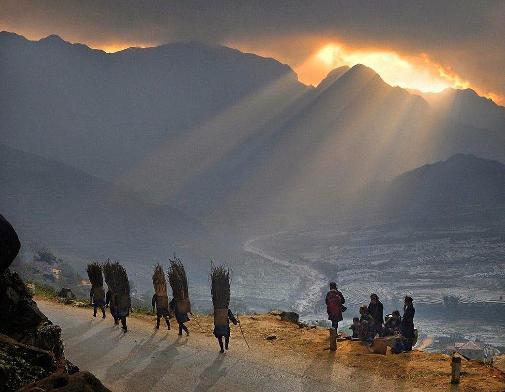 Người dân H'Mong đụi củi về nhà