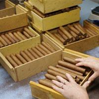 Quy trình sản xuất điếu xì gà trứ danh ở Cuba