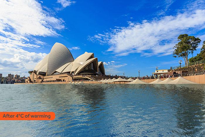 Sydney tăng 4 độ C