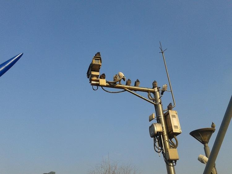 Camera giám sát được lắp đặt khắp nơi.