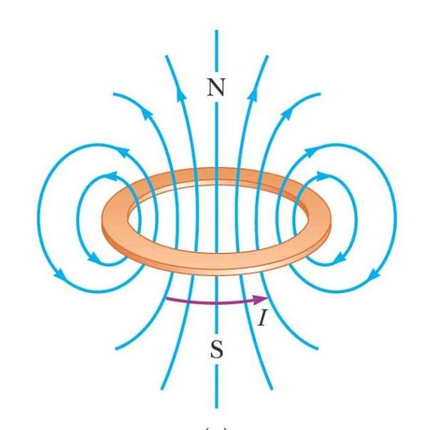 Đường sức từ của vòng tròn nam châm.