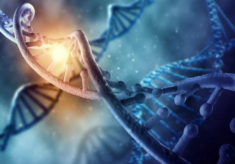 Các nhà khoa học nghiên cứu và phát hiện những mảnh ADN của virus cổ đại trong bộ gen con người.