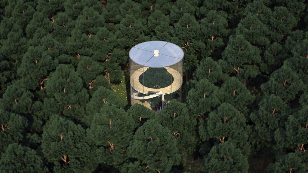 Ngôi nhà nổi bật trong rừng cây