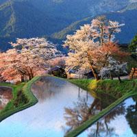Những bức ảnh thiên nhiên rực rỡ sắc màu trên toàn thế giới