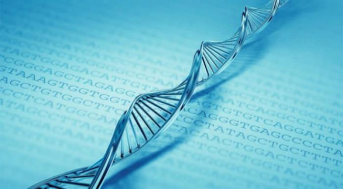 1 gram DNA của bạn có thể chứa toàn bộ dữ liệu của facebook và google
